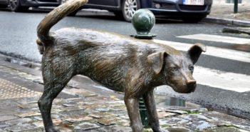 «Писающая собачка» в Брюсселе — где находится и как добраться